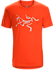 T-shirt Archaeopteryx Men's Magma