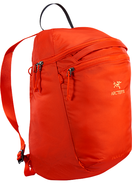 Index 15 Backpack  Dynasty