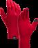 Rho Glove  Radicchio