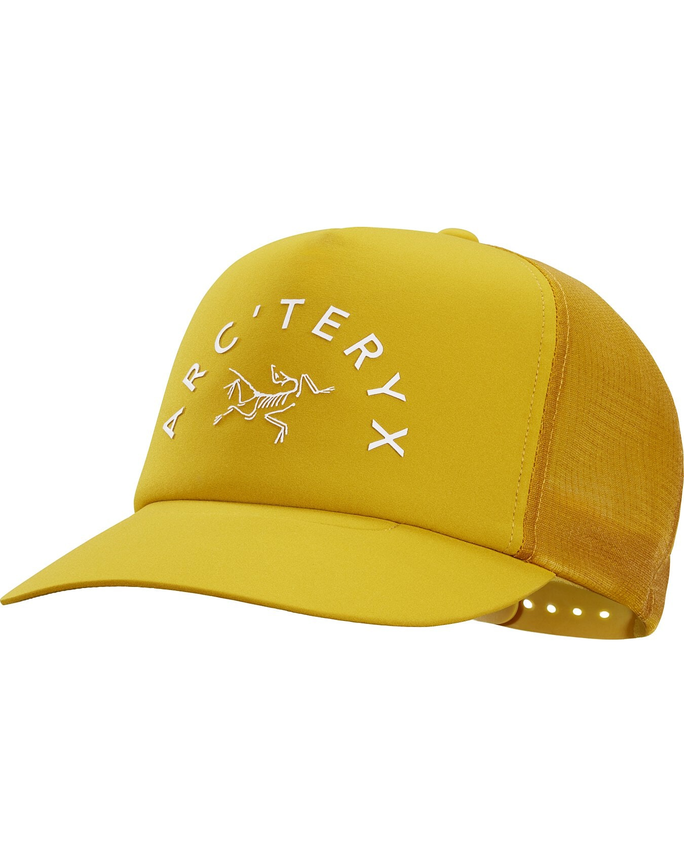 Arch'teryx Curved Brim Trucker Hat Pipe Dream