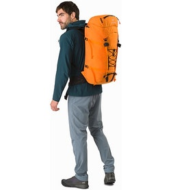 Alpha AR 35 Backpack Beacon Back View