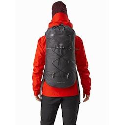 Alpha FL 30 Backpack Carbon Copy Back View