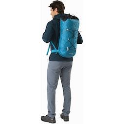Alpha FL 30 Backpack Dark Firoza Back View