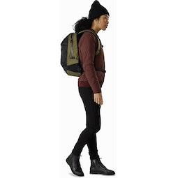 Arro 16 Backpack Wildwood Fit