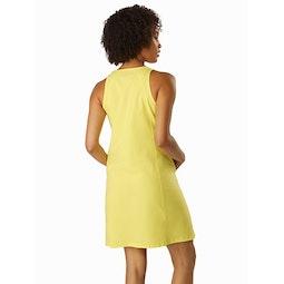 Contenta Shift Dress Women's Zenith Back View