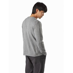 Covert LT Pullover Pegasus Heather Back View