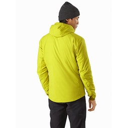 Proton LT Hoody Glade Back View