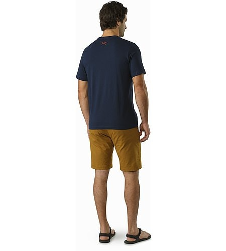 サブアルパイン Tシャツ キングフィッシャー 背面